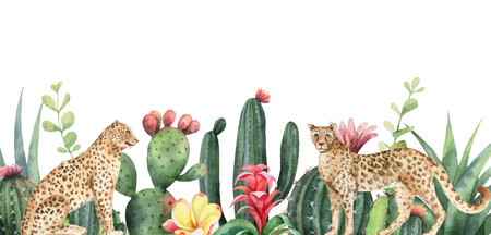Watercolor  banner tropical flowers, leopards and cacti isolated on white Stock Illustratie