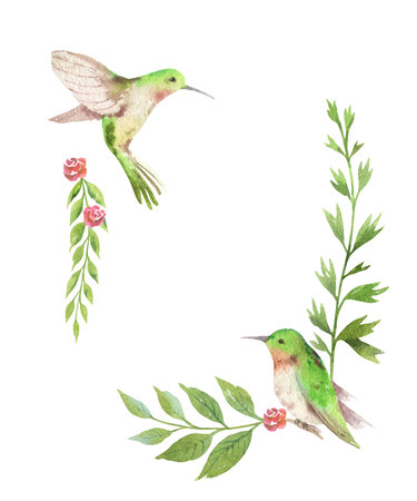 Watercolor vector card green leaves, hummingbird and flowers isolated on white background. Illustration for design wedding invitations, greeting cards, postcards.