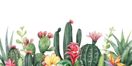Watercolor vector banner tropical flowers and cacti isolated on white background. Illustration for design wedding invitations, greeting cards, postcards. Illustration