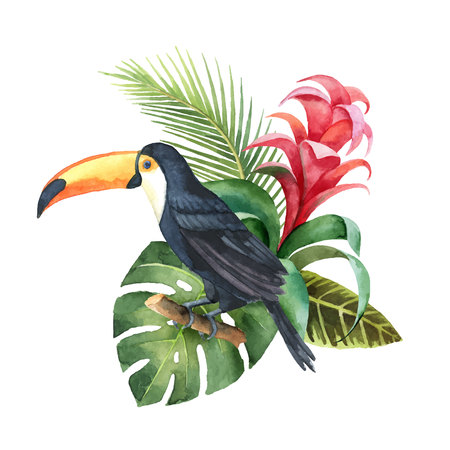 Watercolor vector composition with Toucan, exotic leaves and flowers isolated on white background. Illustration for design wedding invitations, greeting cards, postcards.