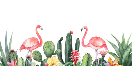 Watercolor vector banner tropical flowers, Flamingo and cacti isolated on white background. Illustration for design wedding invitations, greeting cards, postcards.