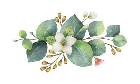 Aquarel vector boeket met groene eucalyptus bladeren en bloemen. Genezende kruiden voor kaarten, huwelijksuitnodiging, posters, bewaar deze datum of groet ontwerp geïsoleerd op een witte achtergrond.