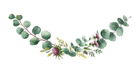 Bouquet de vecteur aquarelle avec des feuilles d'eucalyptus vert et des plantes de prairie. Herbes médicinales pour cartes, invitation de mariage, affiches, réservez la date ou la conception de voeux isolée sur fond blanc. Vecteurs