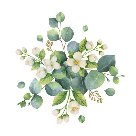 Watercolor vector bouquet with green eucalyptus leaves and flowers. Healing Herbs for cards, wedding invitation, posters, save the date or greeting design isolated on white background.