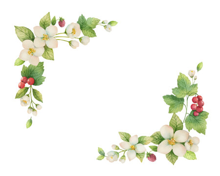 Watercolor vector wreath of Jasmine and red currant flowers. illustration for cards, wedding invitation,save the date or greeting design. Summer flowers with space for your text.