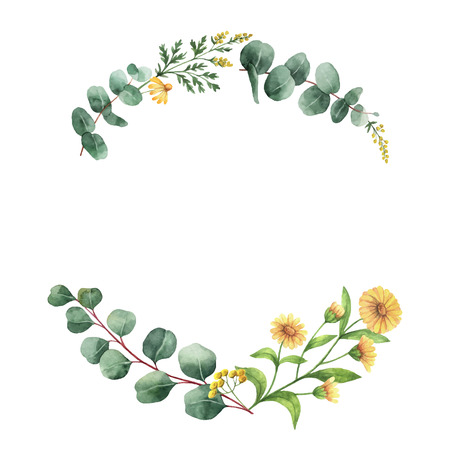 Watercolor  wreath with green eucalyptus leaves and meadow plants.