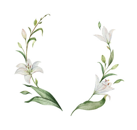 Aquarel vector krans van Lily bloemen en groene bladeren. illustratie voor kaarten, huwelijksuitnodiging, bewaar deze datum of groetontwerp. Zomerbloemen met ruimte voor uw tekst.