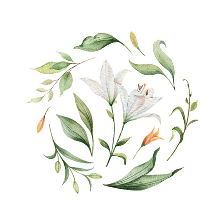 Watercolor vector arrangement of Lily flowers and green leaves. illustration for cards, wedding invitation,save the date or greeting design. Summer flowers with space for your text.