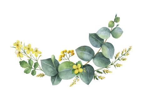 Guirnalda de vector acuarela con hojas de eucalipto verde y plantas de prado. Hierbas curativas para tarjetas, invitaciones de boda, carteles, guardar la fecha o el diseño de saludo aislado sobre fondo blanco.