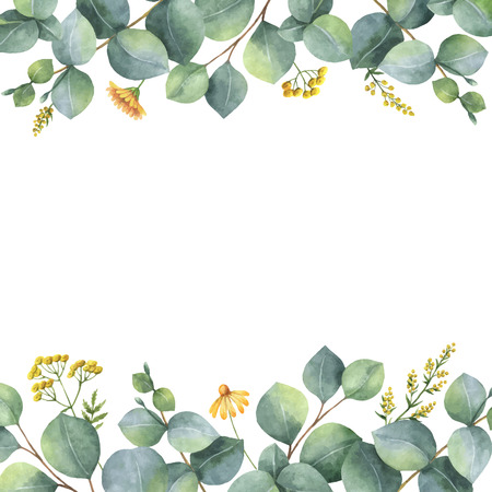 Watercolor vector card with green eucalyptus leaves and meadow plants. Healing Herbs for cards, wedding invitation, posters, save the date or greeting design isolated on white background. Ilustração Vetorial