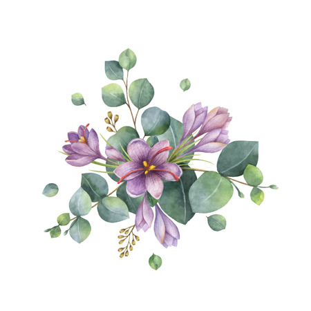 Watercolor vector hand painted bouquet with green eucalyptus and flowers of saffron. Healing Herbs for cards, wedding invitation, posters, greeting design isolated on white background. Ilustracja