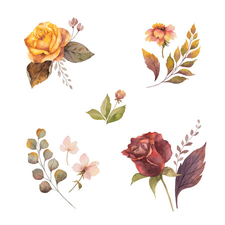 Watercolor vector autumn set with roses and leaves isolated on white background. Flower illustration for greeting cards, wedding invitations, floral poster and decorations. Illustration