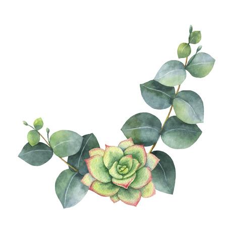 Aquarellvektorkranz mit Eukalyptusblättern und Sukkulenten. Illustration für Hochzeitseinladung, speichern Sie das Datum oder den Grußentwurf. Frühlings- oder Sommerblumen mit Platz für Ihren Text.