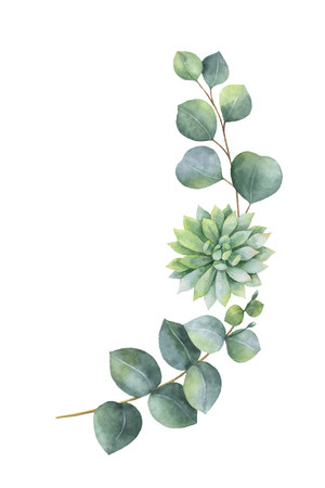 Watercolor vector wreath with eucalyptus leaves and succulents. Illustration