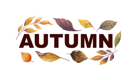 Watercolor vector banner with autumn leaves isolated on white background. Botanic composition for greeting cards, wedding invitations, floral poster and decorations.