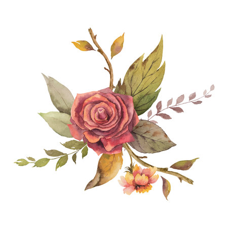 Watercolor vector autumn arrangement with rose and leaves isolated on white background. Arrangement for greeting cards, wedding invitations, invite and decorations.