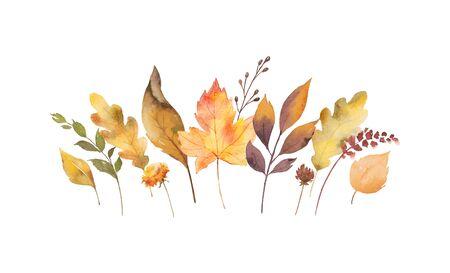 Scheda di vettore dell'acquerello con foglie autunnali e rami isolati su priorità bassa bianca. Disposizione per biglietti di auguri, inviti di nozze, inviti e decorazioni. Vettoriali