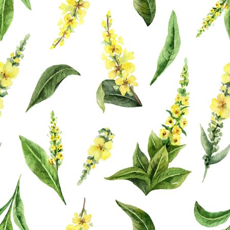 Watercolor vector seamless pattern with Mullein flowers and leaves isolated on white background. Illustration for wallpaper design, botanical drawing, textile, packaging and decorative print. Иллюстрация