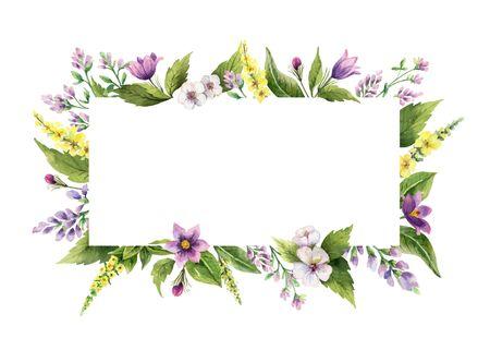 Cornice vettoriale dipinta a mano dell'acquerello con fiori di campo. Illustrazione per biglietti, invito a nozze, negozio di bellezza, elemento decorativo, prodotti naturali e biologici, salva la data o design romantico..