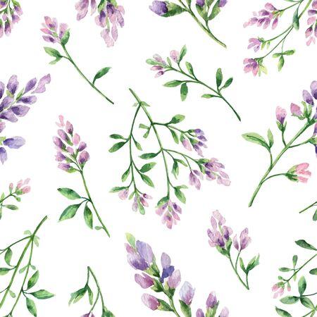 Patrón transparente de vector acuarela con flores de alfalfa y hojas aisladas sobre fondo blanco. Ilustración para diseño de papel tapiz, dibujo botánico, textil, embalaje e impresión decorativa.