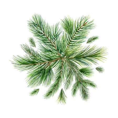 Christmas vector composition with green fir branches isolated on white background. Illustration for greeting cards, banners, invitations, calendars. Иллюстрация