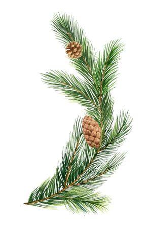 Rama de abeto verde acuarela vector, árbol de Navidad. Ilustración para tarjetas de felicitación e invitaciones aisladas sobre fondo blanco. Ilustración de vector