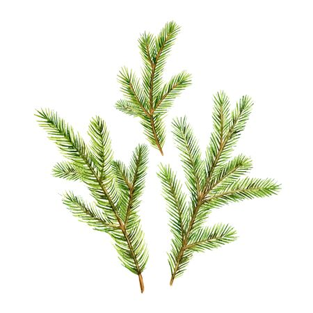 Christmas vector set with green fir branches isolated on white background. Illustration for greeting cards, banners, invitations, calendars.