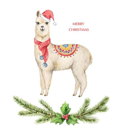 Watercolor vector Christmas card Llama or alpaca and fir branches. Cartoon illustration for greeting cards, poster template and invitations isolated on white background. Holiday decoration.  イラスト・ベクター素材