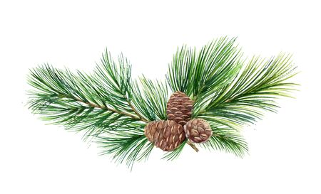 Watercolor vector green spruce wreath with cones, Christmas tree. Illustration for greeting cards and invitations isolated on white background.