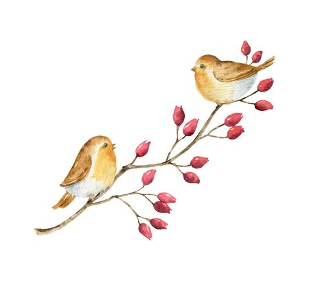 Watercolor branch with red berries and birds. Illustration for greeting floral postcard and invitations isolated on white background.