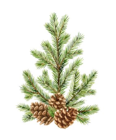Watercolor vector green spruce arrangement with cones, Christmas tree. Illustration for greeting cards and invitations isolated on white background.