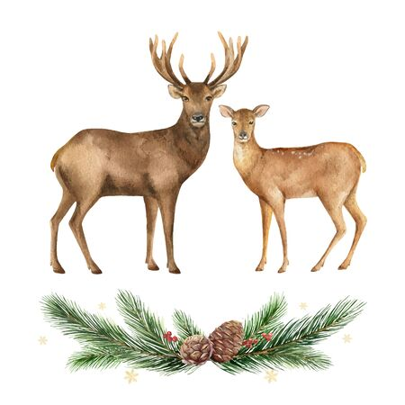 Christmas  Reindeer and wreath with fir branches. Иллюстрация
