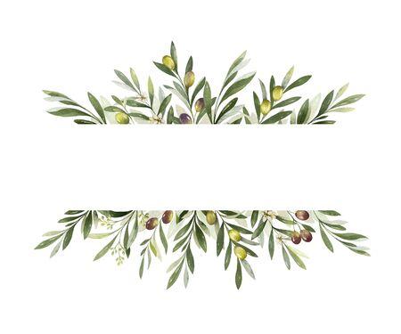 Aquarell-Vektor-Banner von Olivenzweigen und Blättern isoliert auf weißem Hintergrund. Blumenillustration für Hochzeitsbriefpapier, Grüße, Tapeten, Mode und Einladungen