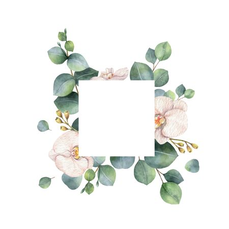 Watercolor vector frame with eucalyptus branches and Orchid flowers isolated on white background. Skin care health treatment concept.