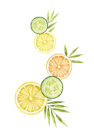 Watercolor vector card with lemon, cucumber slices and tropical leaves isolated on white background. Floral illustration for greetings, wallpapers, fashion and invitations. Ilustração