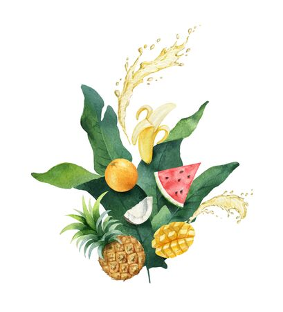 Watercolor vector composition of green tropical leaves and fruits. 向量圖像