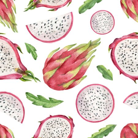 Watercolor vector seamless dragon fruit pattern on a white background.
