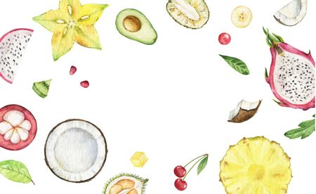 Watercolor vector hand painted card of exotic fruits. Fresh food design elements isolated on white background.