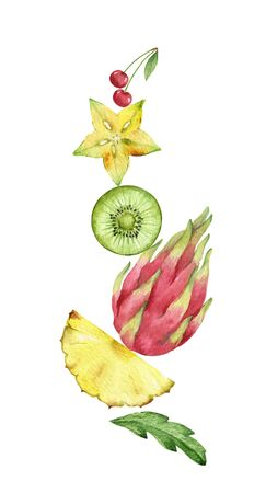Watercolor vector hand painted composition of exotic fruits. Fresh food design elements isolated on white background.