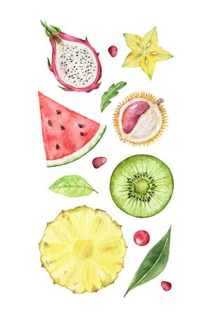 Watercolor vector hand painted set of exotic fruits. Fresh food design elements isolated on white background.