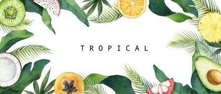 Watercolor vector composition of green tropical leaves and fruits. Ilustração Vetorial
