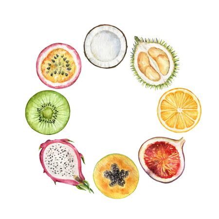 Watercolor vector hand painted frame of exotic fruits.