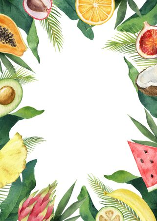 Watercolor vector composition of green tropical leaves and fruits. Illustration
