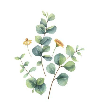 Watercolor vector arrangement with eucalyptus and flowers.