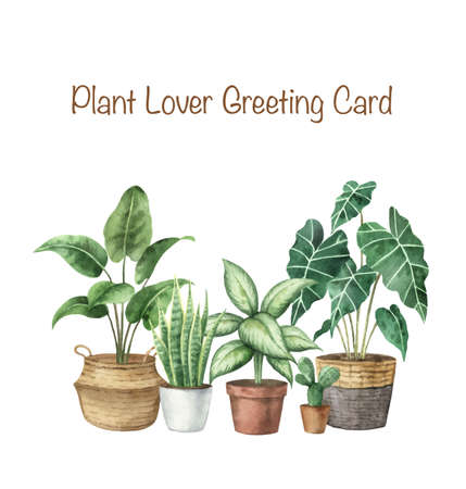 Watercolor vector set with home plants in ceramic pots.