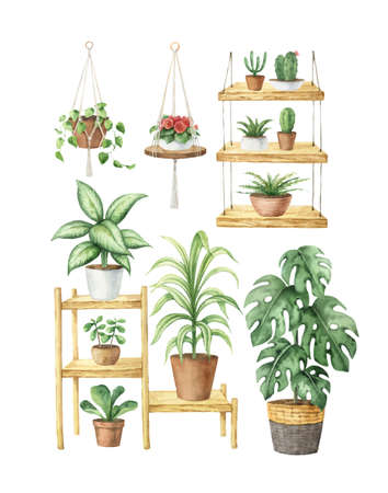 Watercolor vector aesthetic room decor and indoor plants. Plant lover card. Boho cozy home clipart. Hand painted illustration for decor, stationary, postcards, packaging, invitations, kitchen and gardening. Decorative collection isolated on white background.
