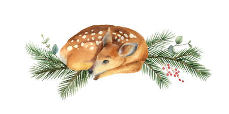Watercolor vector Christmas card with fawn and fir branches.