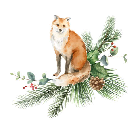 Watercolor vector Christmas card with fox and fir branches. Ilustração