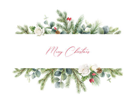 Watercolor vector Christmas banner with fir branches, rose and eucalyptus.