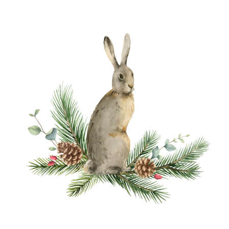Watercolor vector Christmas card with a hare and fir branches. Ilustração